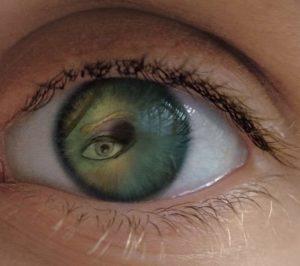 Eye Artwork by Merill August James Thayer