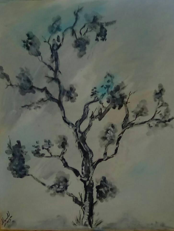 Cocomonday Tree